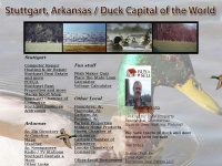 Stuttgart Arkansas | Ducks | Rice | Deer | Real Estate