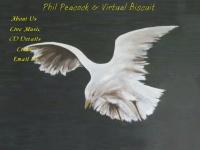 virtualbiscuit.co.uk Thumbnail