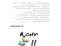 acorngalleryidyllwild.com
