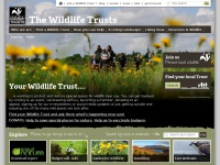 wildlifetrusts.org Thumbnail