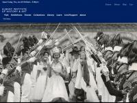 Albanyinstitute.org