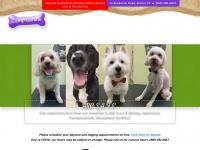 campcaninect.com