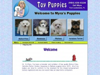 toypuppies.com