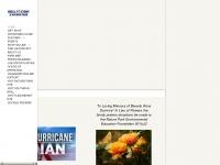 shellfactory.com