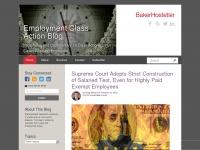 employmentclassactionreport.com