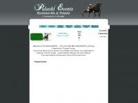 pulaskievents.com