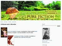 diaryofaheretic.com