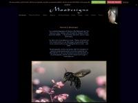 moodesigns.com