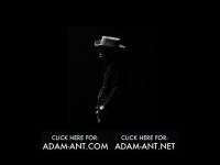 adam-ant.net