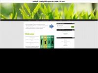 bullockfamilychiropractic.com