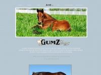 gumzfarms.com