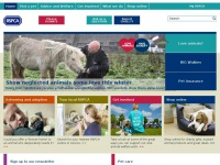 rspca.org.uk Thumbnail