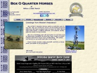 boxoquarterhorses.com