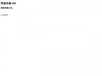 netintellects.com