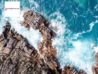 mcteggartntx.org
