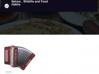 allisondennisdesigns.com
