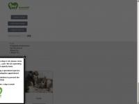 green-hill.org