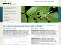 mipn.org