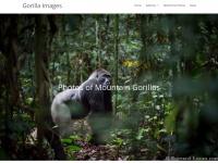 gorillaimages.com