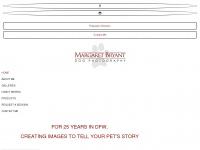 bryantdogphotography.com