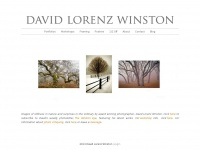 davidlorenzwinston.com