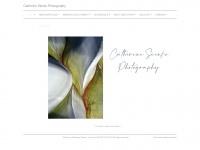 voodooink.net