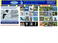 Aabirdpix.com