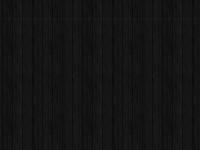 avianphotos.org