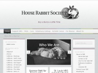 rabbit.org