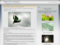 """""""Macro Art In Nature"""""""