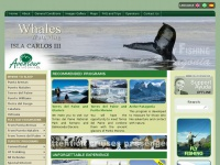 Torres del Paine, Australis Cruises, Fly Fishing, Patagonia, Penguins, Navigations, Glaciers