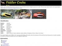 fiddlercrab.info