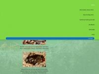 antnest.co.uk Thumbnail