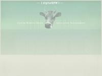 digitaldfw.com