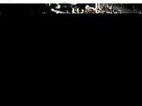 kieninger.com
