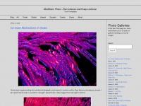 mindstormphoto.com