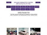 skylinegym.com