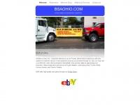 bsaohio.com