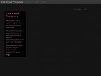 cindykassab.com