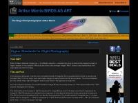 birdsasart-blog.com