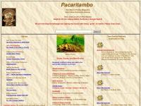 pacaritambo.com