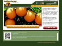 Goldenharvestsales.com - Healthy Fundraising with Golden Harvest Fruit Sales