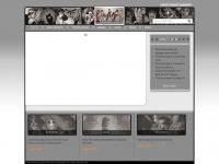 davestevens.com