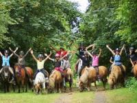 poneysincarville.com