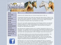 homesteadmorgans.com