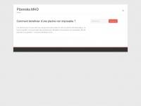 plzenskamhd.net