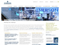 emersonprocess.com