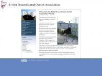ostrich.org.uk