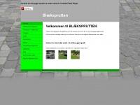 Blaeksprutten-thyholm.dk