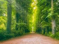 radoor.net